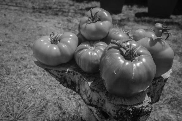 Food Blog Photo Fridays 2013-2418