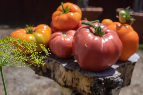 Food Blog Photo Fridays 2013-2421