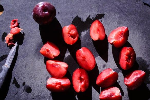 Food Blog August 2014-0434