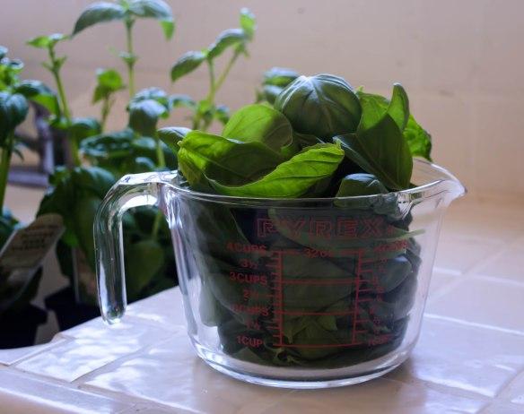 Food Blog August 2014-0450