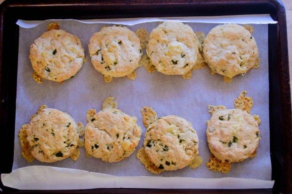 Food blog July 2015-1112
