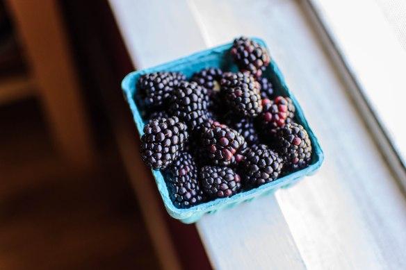2016 Food Blog August-0691